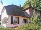Rieten dak voor renovatie