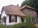 Rieten dak na renovatie